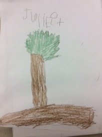 Juliet's picture of the garden box where she wanted to plant the bulbs.